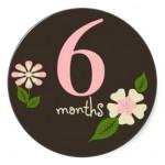 floral_6_months